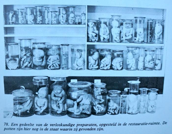 De collectie zoals deze in 1914 in de Vroedvrouwenschool kwam (uit Vn Lieburg, 1974)