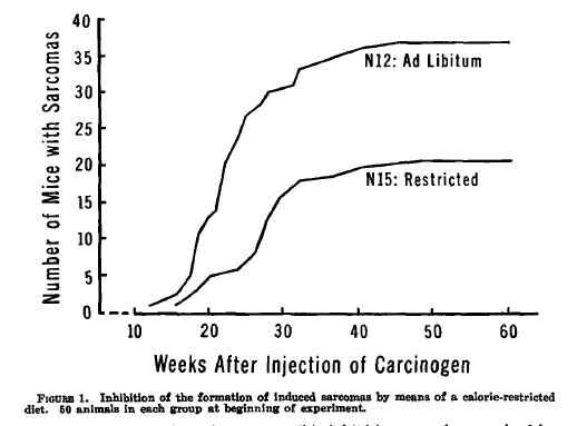 Uit: Albert Tannenbaum. Effects of varying caloric intake upon tumor incidence and tumor growth. Ann NY Academy Science, 1947