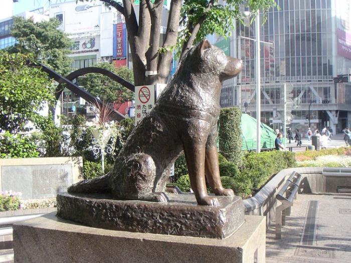 Bronzen beeld van Hachi-ko bij het treinstation van