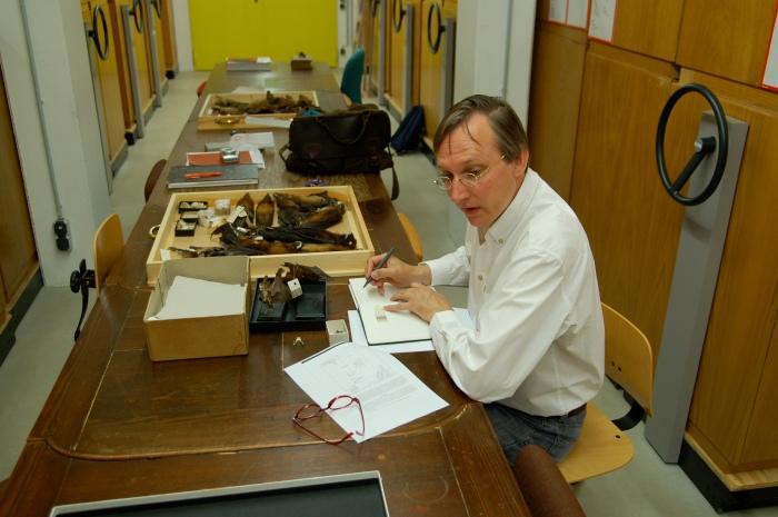 In juni 2008 werkten Kees Moeliker en ik aan de collectie fruitvleermuizen en ratten in het Museum füt Tierkunde in Dresden, Duitsland Foto: Erwin Kompanje