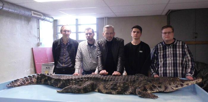 Voorafgaande aan de ontleding van een slender-snouted crocodile (Crocodylus cataphractus). v.l.n.r. Kees Moeliker, Ferry van Jaarsveld, Erwin Kompanje, Otto van Duijn en Bram Langeveld. Februari 2016, Natuurhistorisch Museum Roterdam